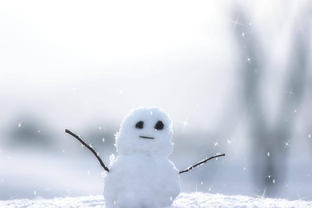2018年の交流ツアーのお誘い 雪遊び&スキー&温泉 in 滋賀ツアー
