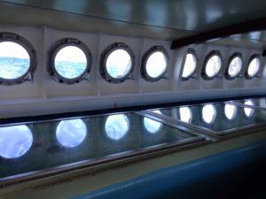 グラスボート写真
